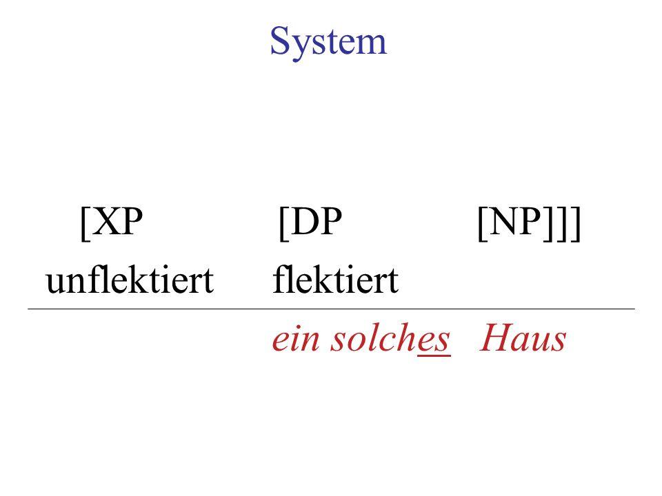 System [XP [DP [NP]]] unflektiert flektiert ein solches Haus